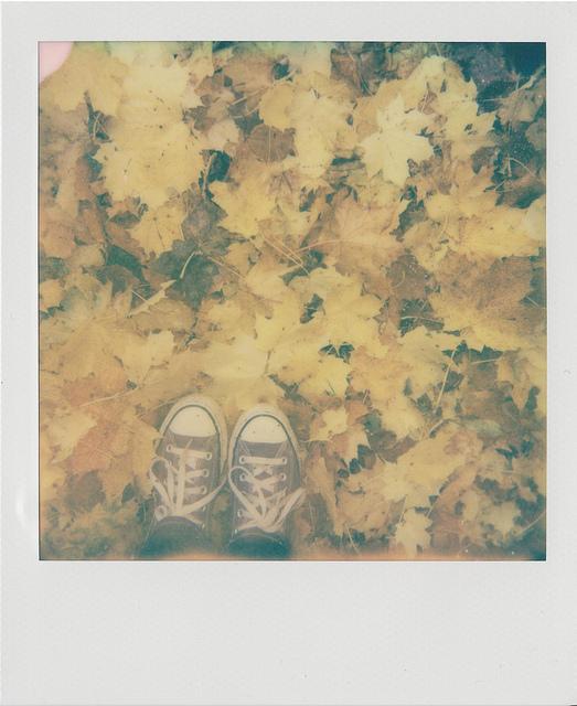 Autumn I.
