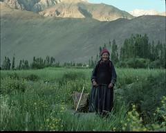 Goodmorning_Ladakh_4 (Jakob Tragardh) Tags: india mediumformat himalaya leh ladakh tragardh jakobtrgrdh