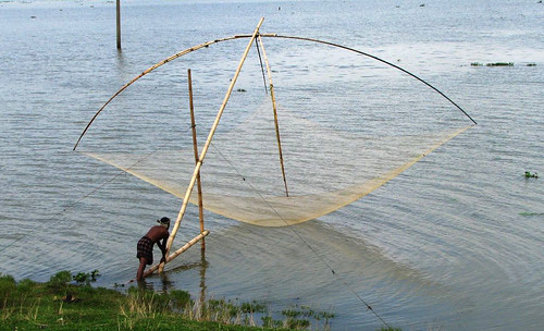 Fishing with dharma jal (lift net), Sunamganj, Bangladesh. Photo by Balaram Mahalder, 2009