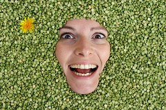 Split Peas (.chourmo.) Tags: flower verde green texture smile face smiling idea yellowflower peas sorriso fiore stefania faccia piselli volto splitpeas fioregiallo pisellispezzati nicopiotto