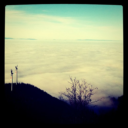 inversionswetterlagenmeer. #latergram