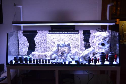 Luc's shallowreef tank 6354778065_9a15ba770a