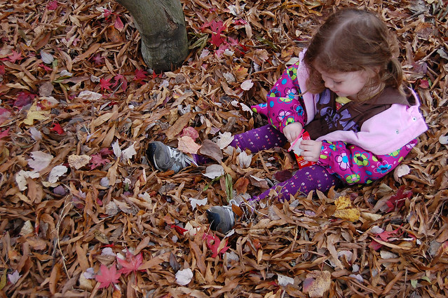 Nov11-leafpile_0629