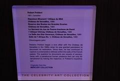 Celebrity-Silhouette_33