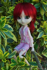 In The Trees (Pint-Size Pirate) Tags: doll collectible 16doll 16 photography dollphotography nikond5000 nikon d5000 asian junplanning groove pullip 27cm obitsu custom customized grell cookie dian daian greeneyes redhair straighthair ponytails pink lolitaoutfit branch tree leaves outside outdoors sitting