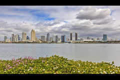 San Diego Bay & Downtown Skyline (x-ray tech) Tags: california sky cloud plant flower detail building water beautiful contrast photoshop hotel bay interestingness cool nice interesting bush flickr sandiego superb wind district air horizon tripod bracket hilton clarity sharp clean explore adobe level gaslamp definition embarcadero excellent conventioncenter quarter curve capture breeze coronado hdr omni seaportvillage outstanding emeraldplaza petcopark photomatix manchestergrandhyatt ef1635mmf28l cs5 oldferrylanding canoneos5dmarkii