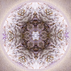 Love Trumps Everything (SueO'Kieffe) Tags: digital crystal mandala meditation spiritual ascension auraliteamethyst