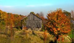 Down on the farm (Bill Pawlitzki) Tags: fall colors barn photo nikon flickr farm most ever hdr viewed 8800
