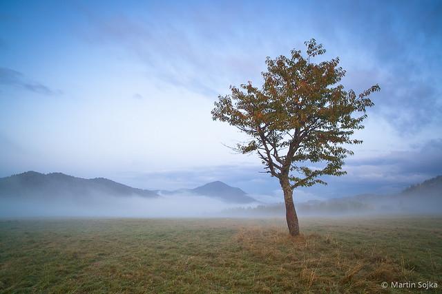 Silent Sentinel ~ Slovakia