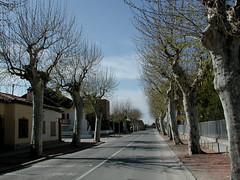 errante_06460