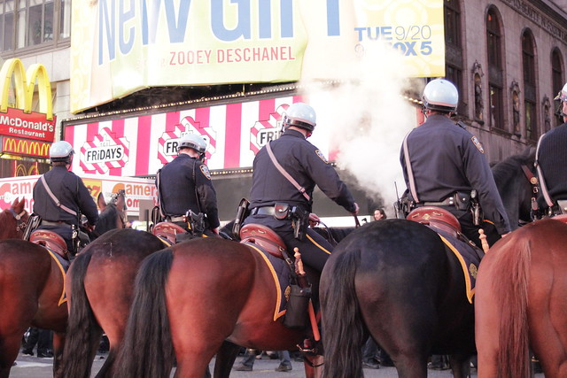Mounted NYPD at Occupy Wall Street