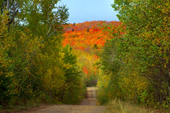 Road To Autumn (karenmeyere) Tags: autumn minnesota tofte obergmountain karenmeyere karenhunnicutt karenmeyer karenhunnicuttphotographycom