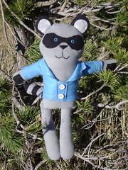 Rowan Raccoon Ragimal