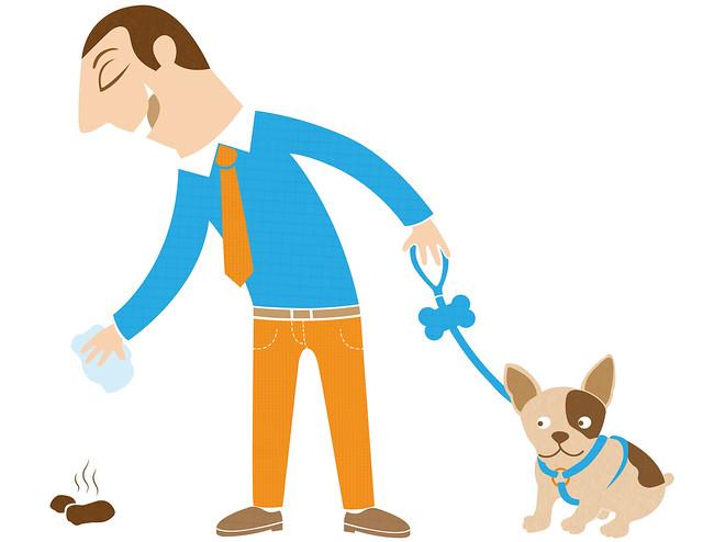 cacas de gos