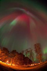 Aurora (Robbin Glliner) Tags: light red sky tree green night star amazing nikon purple sweden fisheye aurora stunning 105 northern borealis norrsken d90