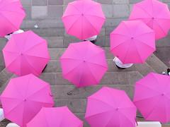 Flashmob Outubro Rosa