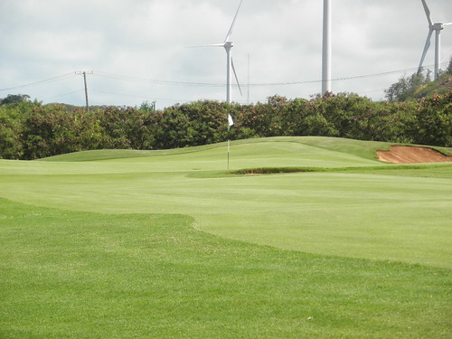 Turtle Bay Colf Course 262