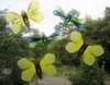 Yellow Butterflies And Dragonflies
