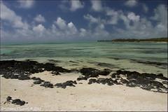 Isola dei Cervi (Cristiano Capponi) Tags: mauritius dei isola cervi isolemauritius cristianocapponi wwwcristianocapponiit