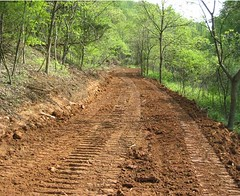 One of the many benefits of harvesting timber includes significant access improvements.