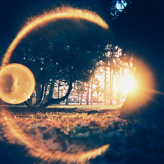 Ring of Fire (Daniel Polidori) Tags: film sunrise xpro crossprocessed lensflare lubitel russiancameras
