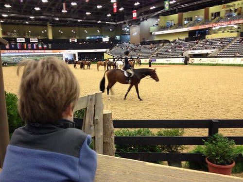 2011 Alltech National Horse Show - Lexington, Ky.