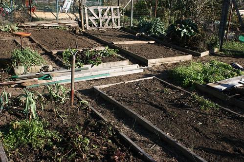 garden  023