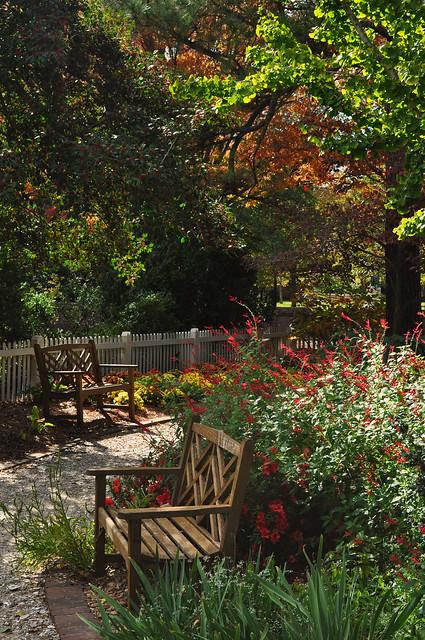 Adams Garden (2)