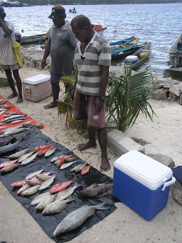 Fish selling, Solomon Islands. Photo by Jamie Oliver, 2008