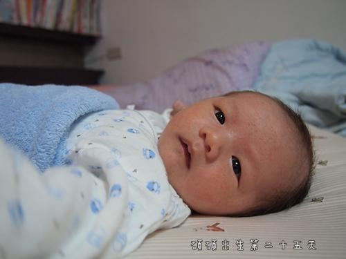 出生第二十五天1