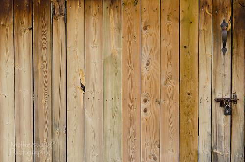 320:365 Wooden door