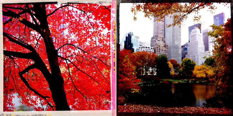autumn in new york 5