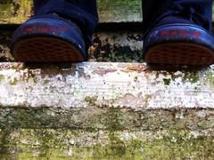 """I can't keep my feet off of the edge."" (KelBob11) Tags: feet lyrics shoes steps edge midnight after vans blink neighborhoods 182"