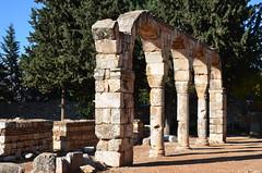Anjar, Umayyad city, al-Walid I, 705-15, along the decumanus maximus (4) (Prof. Mortel) Tags: lebanon umayyad anjar