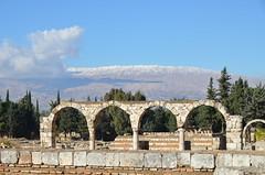 Anjar, Umayyad city, al-Walid I, 705-15, (2) (Prof. Mortel) Tags: lebanon umayyad anjar