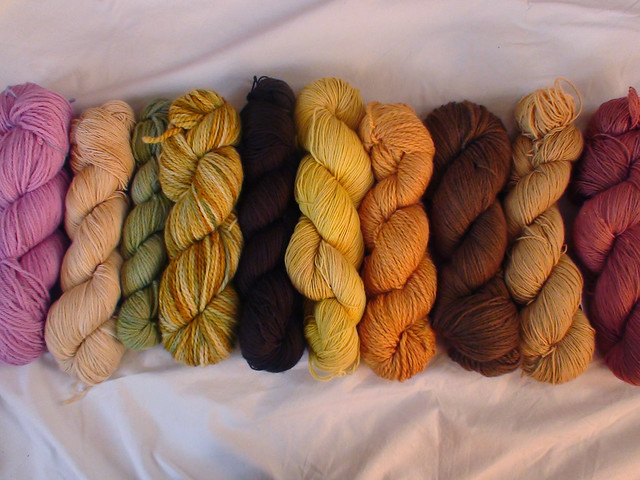 Autumn Colours - Now in the Shop
