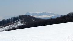 ott tél / there is winter (debreczeniemoke) Tags: winter snow mountains landscape march view március tájkép gutin hó tél hegyek kilátás rozsály kakastaréj canonpowershotsx20is creastacocoşului igniş