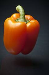Float Pepper (petetaylor) Tags: orange green pepper nikon sweet d300 orangepepper petertaylorphotography wwwpetertaylorphotocom