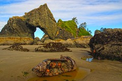 Point of the Arches, Olympic National Park (i8seattle) Tags: sea mist water colors clouds point coast washington arch pacific starfish arches pacificocean coastal pacificnorthwest olympics washingtonstate olympicnationalpark shi pacificcoast washingtoncoast stacks amazingcolors seastack seastacks panorma olympicmountains olympiccoast olympicnationalforest shishibeach pointofarches pointofthearches olympicforest coastpacific coastolympic washingtonphotography imagesofwashingtonstate olympicnationalparkwashingtoncoastsunset seastacksunset imagesofwashington