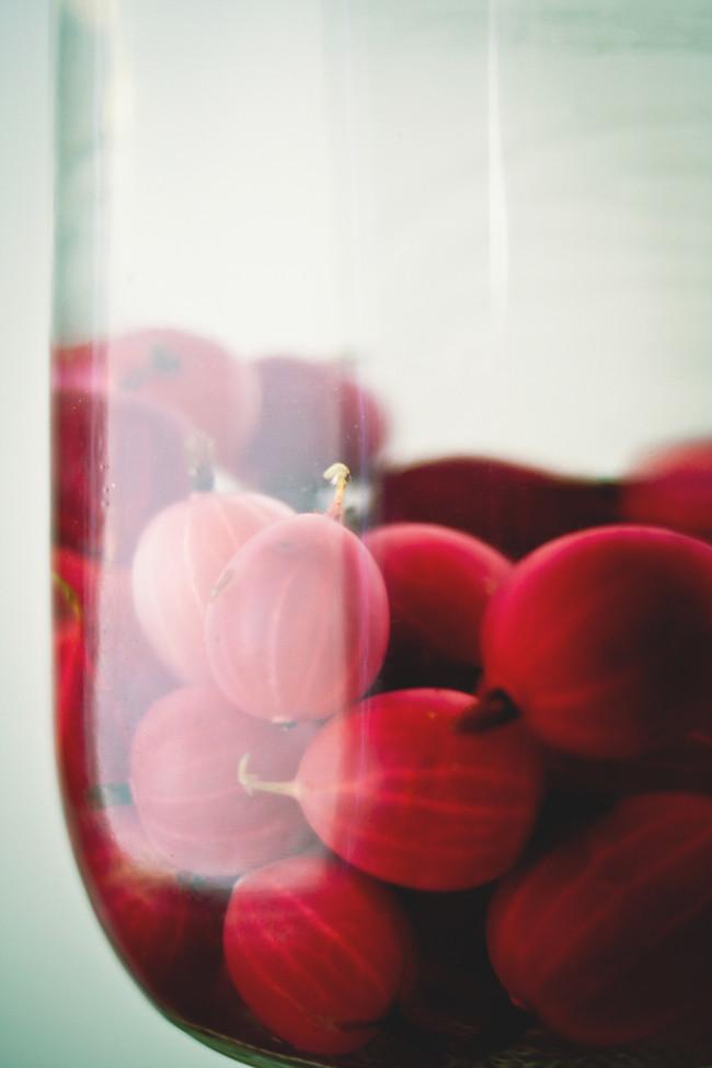 gooseberry eau de vie2 copy