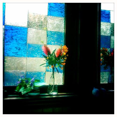 stolen_flower