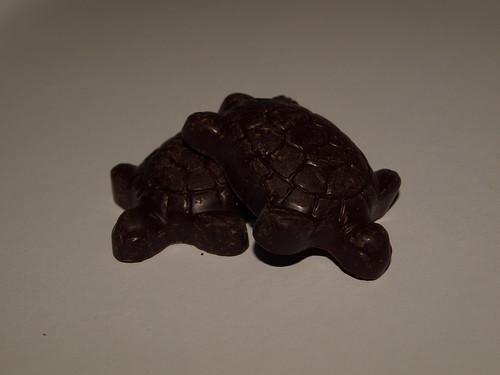 Montezuma's Turtles
