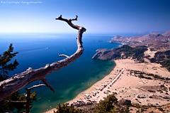 330m Above the Sea Level (Christophe_A) Tags: sea summer sky tree beach high nikon greece christophe rhodes d90 panagia tsampika tokina116 christopheanagnostopoulos χριστοφοροσαναγνωστοπουλοσ χριστόφοροσαναγνωστόπουλοσ