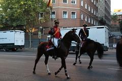 IMG_3467 (Juan R. Ruiz) Tags: espaa horse canon army caballo caballos spain desfile hispanidad guardiareal