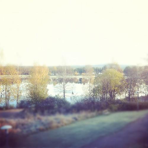 Hur kan det alltid vara så fint väder i Bollnäs? Varje morgon!
