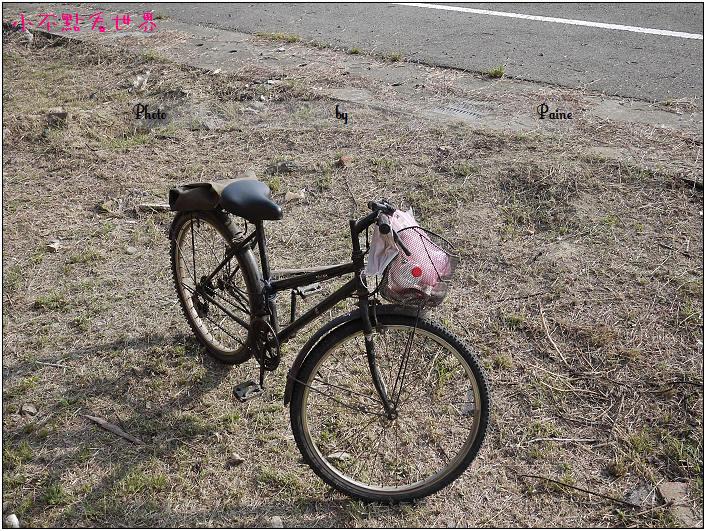 蒜頭糖廠 (23).JPG