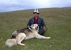 Man With His Dog, Saralasaz Jailoo, Kyrgyzstan (Eric Lafforgue) Tags: people dog man male hat horizontal person one togetherness asia sitting exterior fulllength moustache together pasture mustache centralasia kyrgyzstan humanbeing nomads oneperson colorphoto headgear kyrgyzrepublic kirghizistan kirgistan kalpak lookingatcamera 1498 kirghizstan kirgisistan traditionalhat calpack  calpac nomadiclifestyle   traditionalheadgear saralasazjailoo quirguizisto kalpakhat kalpac qalpaq