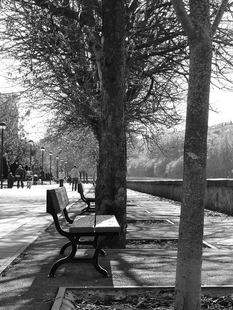 Autumn bench, riverside (Paseo del Urumea)