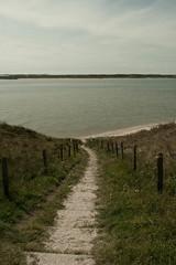 _MG_1571 (danieltreek) Tags: sun holiday holland beach nature water netherlands strand landscape see wasser sommer urlaub natur landschaft sonne nordsee niederlande northsee erholung
