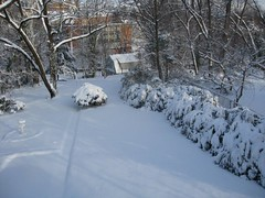 "Backyard In Snow • <a style=""font-size:0.8em;"" href=""https://www.flickr.com/photos/69122677@N02/6285409664/"" target=""_blank"">View on Flickr</a>"
